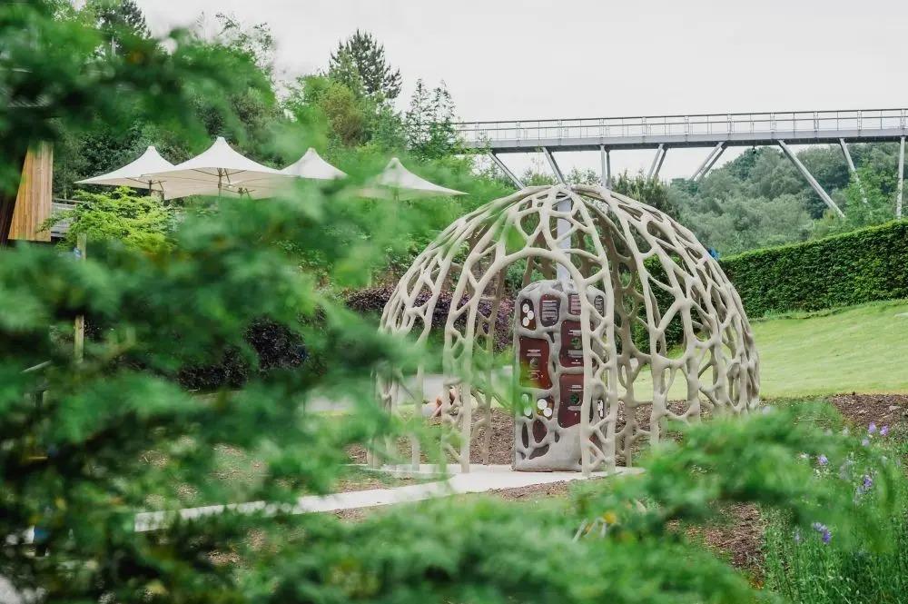 Root Dome behind bush