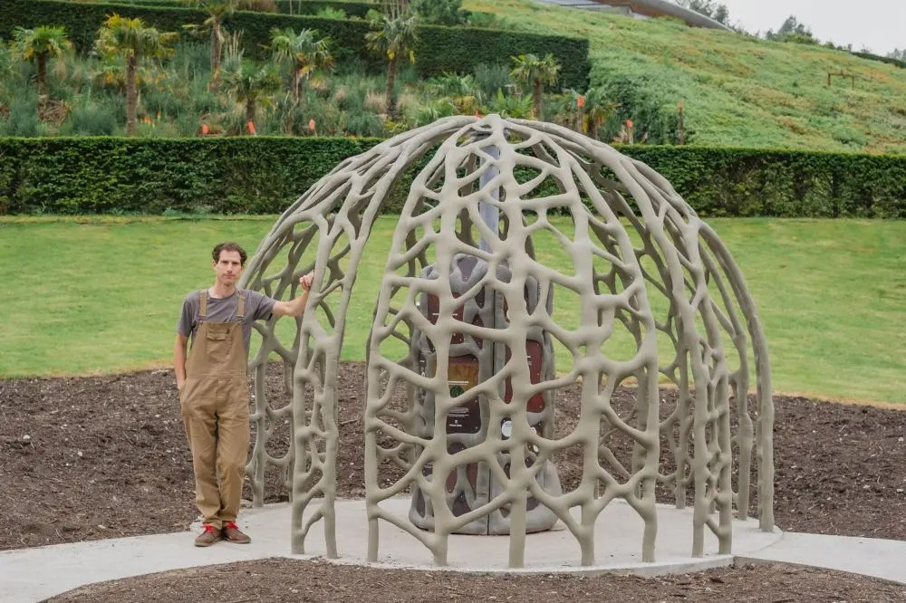 Root Dome with person